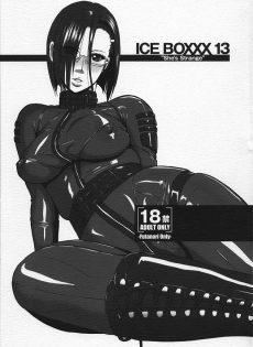 01ICEBOXXX13